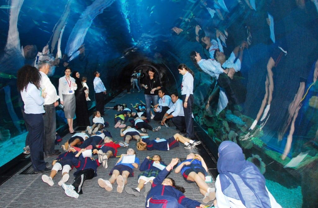 During the education prgoramme at dubai aquarium underwater zoo