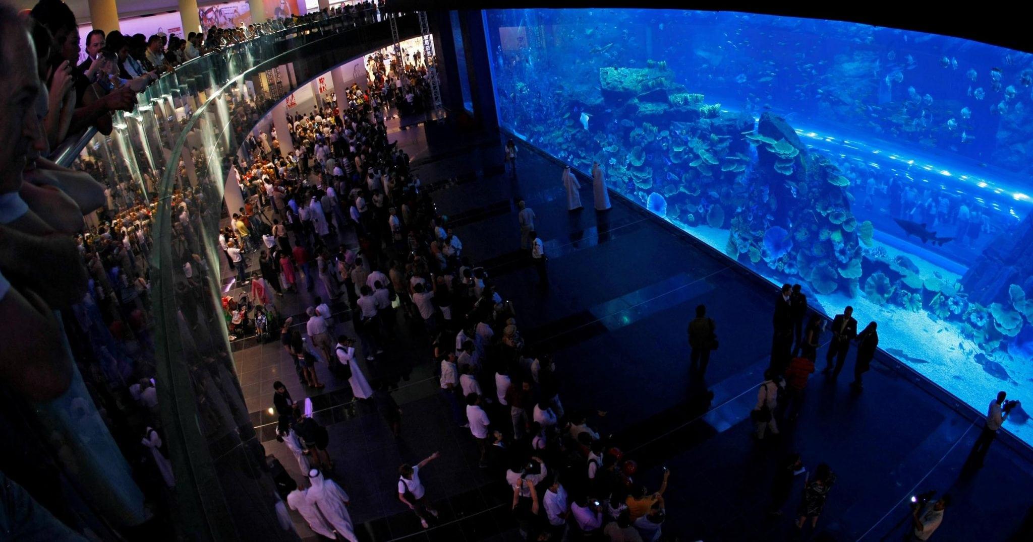 Dubai Underwater Zoo Dubai aquarium & underwater