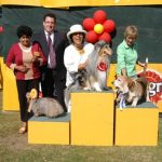 The 22nd Pedigree® & Whiskas® Dubai Pet Show to be held on January 29