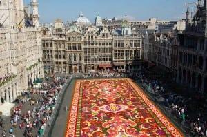 Brussels_Flower carpet