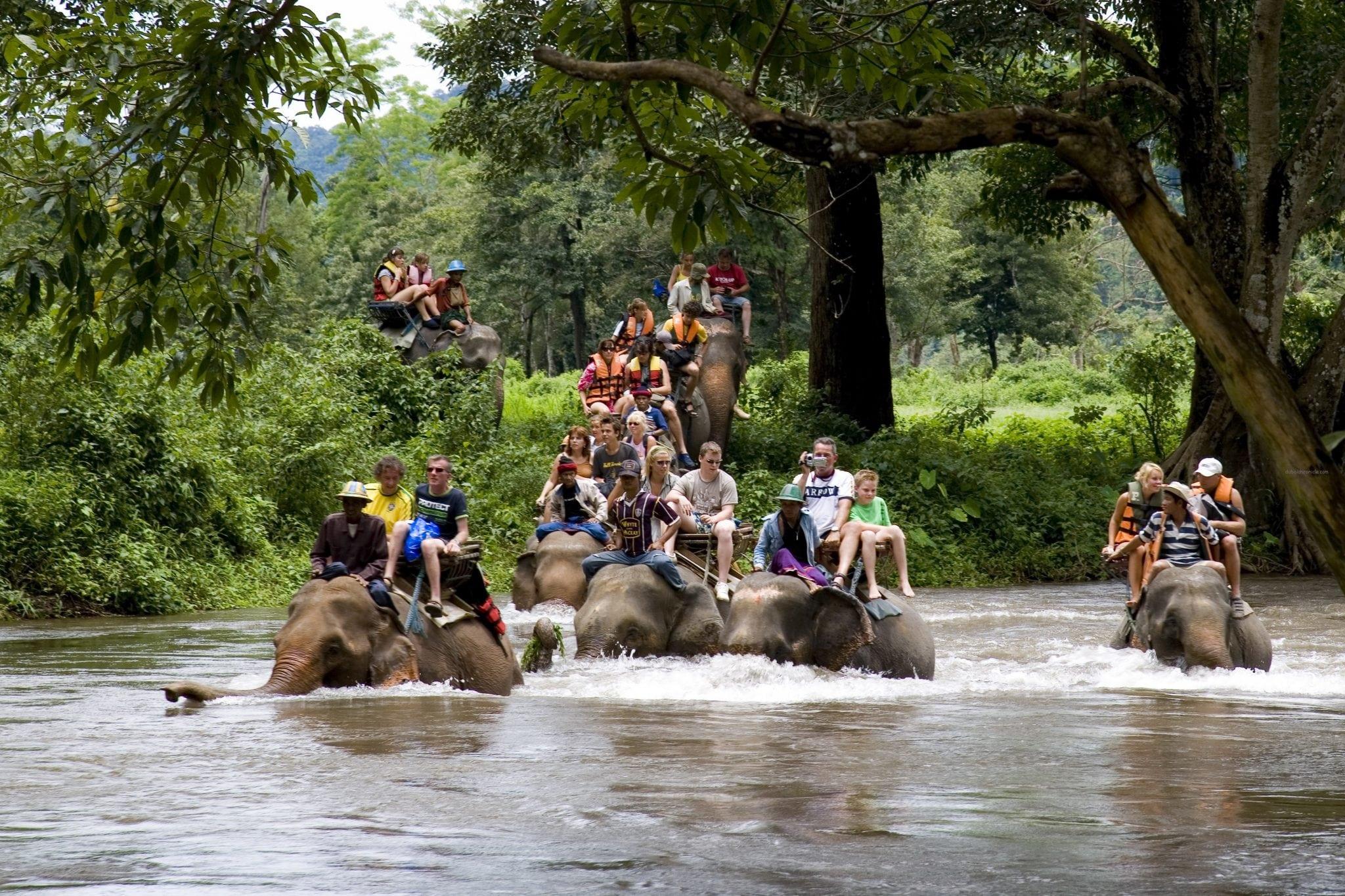 Thailand - Elephant Trekking Tour_2, Kanchanaburi