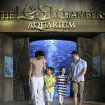 Spend the ultimate summer getaway at Atlantis, The Palm