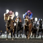 Dubai World Cup's Season 2014 Kicks off in November