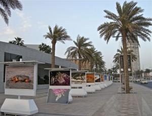 Photography Emaar Boulevard Dubai 1