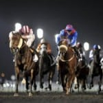 Richer competitions await Dubai World Cup spectators