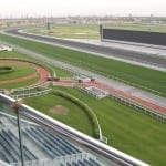 10 Things You Need to Know about Dubai World Cup 2013