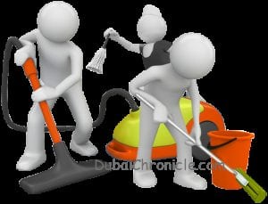 maid services business