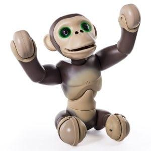 zoomer-chimp